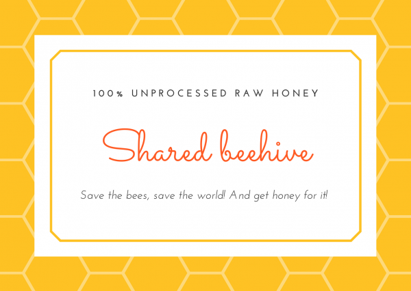 Beehive adoption with a donation to help saving the bees, saving the world, and getting honey for it!